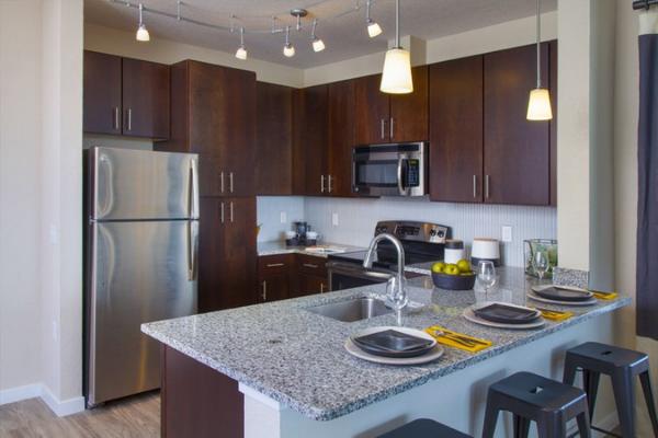 luxury Orlando apartment kitchen
